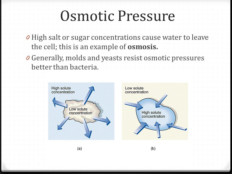 Osmotic Pressure High salt or sugar concentrations cause water to leave the cell; this is an example of osmosis.