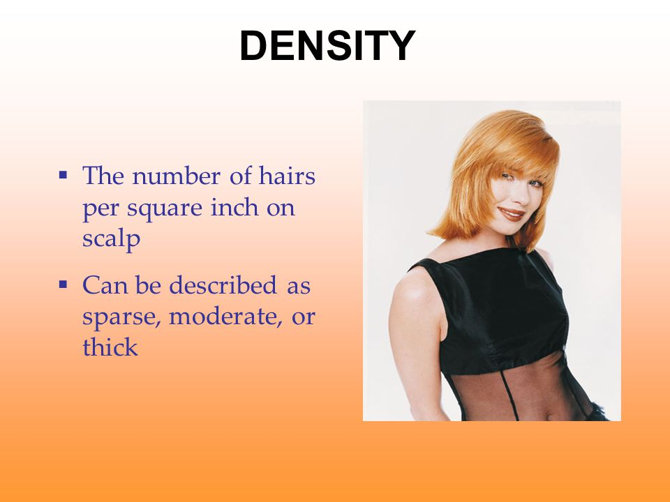 DENSITY The number of hairs per square inch on scalp