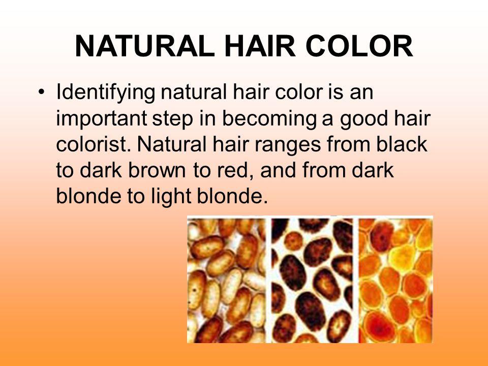 NATURAL HAIR COLOR