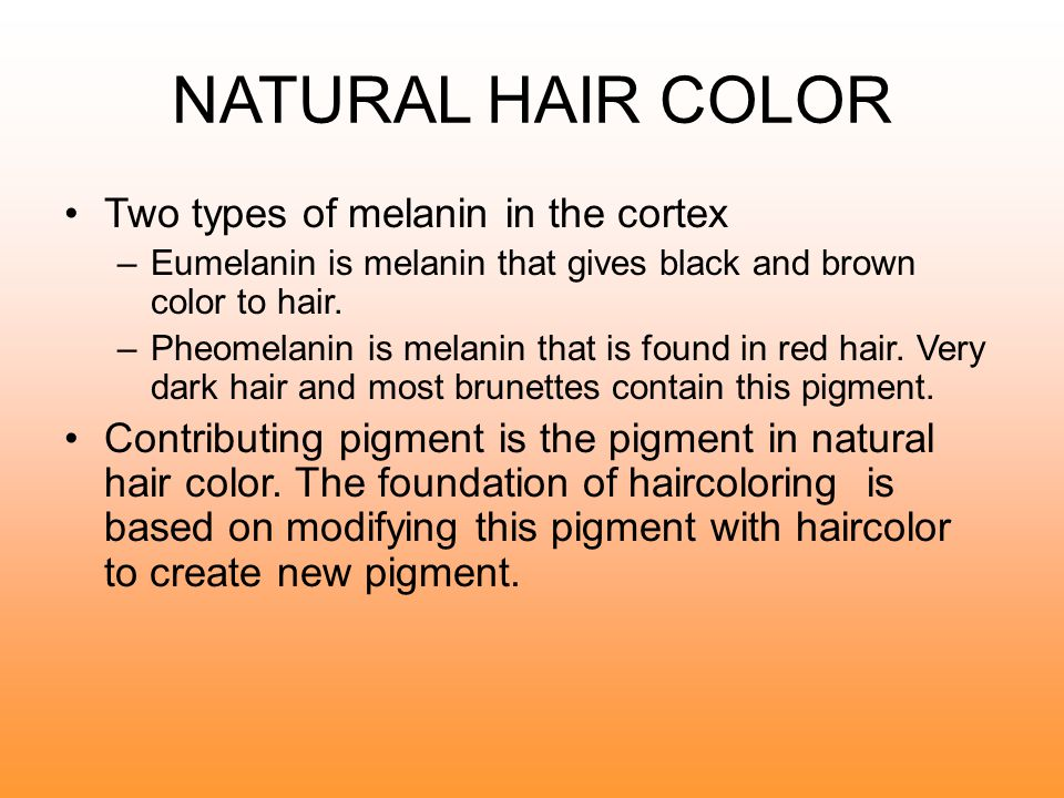 NATURAL HAIR COLOR Two types of melanin in the cortex
