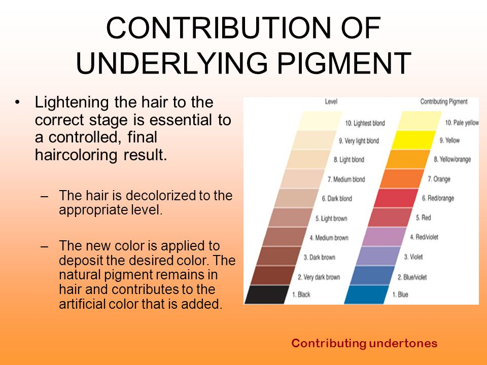 CONTRIBUTION OF UNDERLYING PIGMENT
