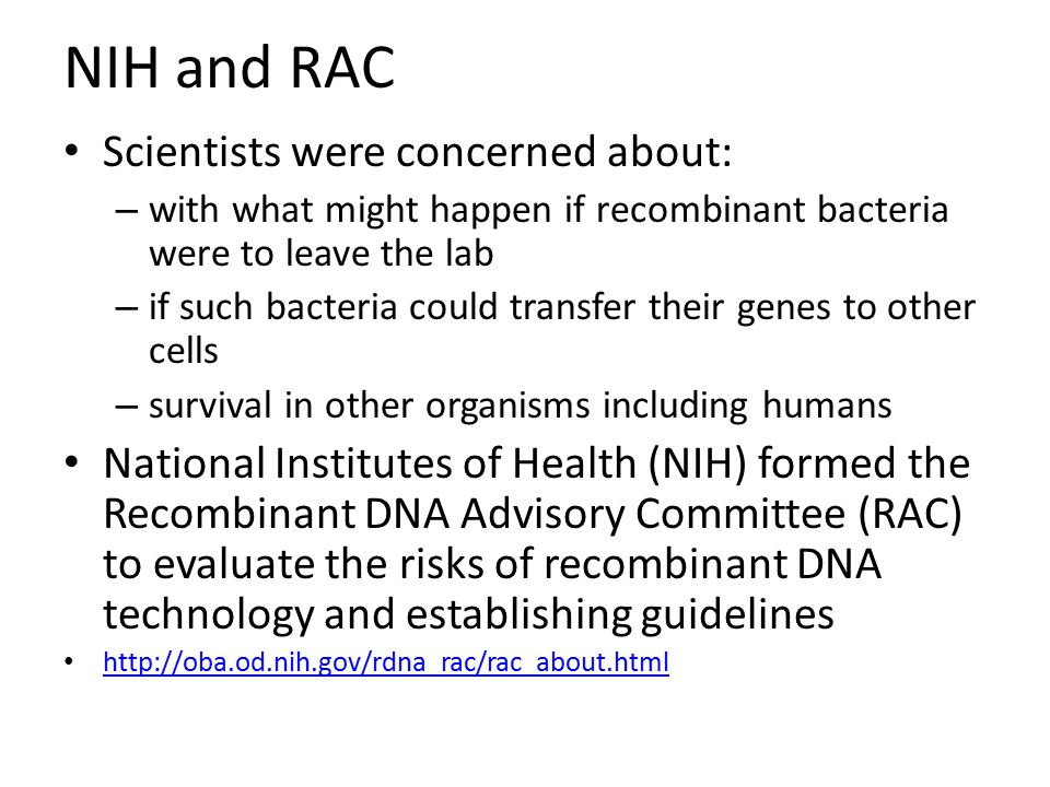 NIH and RAC Scientists were concerned about: