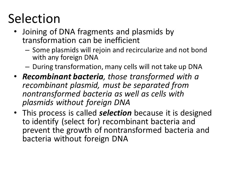 Selection Joining of DNA fragments and plasmids by transformation can be inefficient.