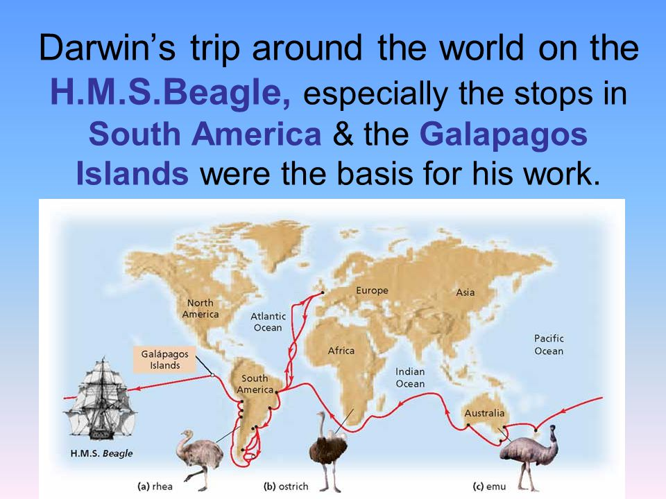 Darwin's trip around the world on the H. M. S