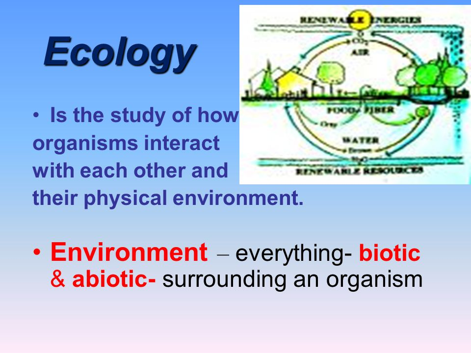 Ecology Is the study of how. organisms interact. with each other and. their physical environment.