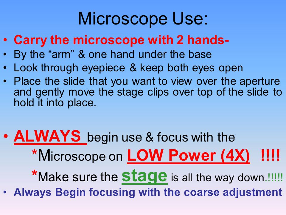 Microscope Use: ALWAYS begin use & focus with the