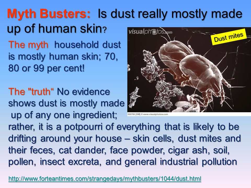 Myth Busters: Is dust really mostly made up of human skin
