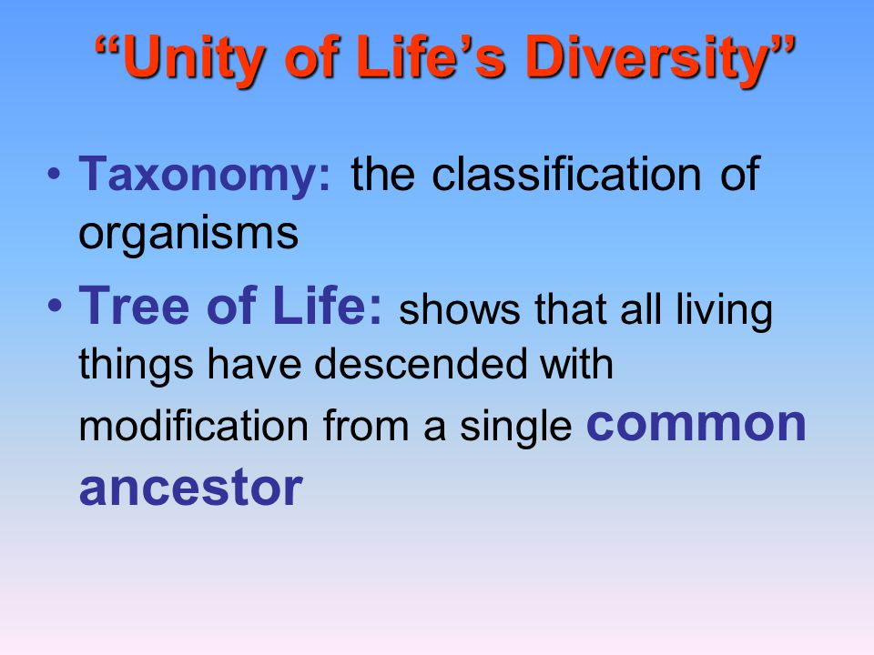 Unity of Life's Diversity