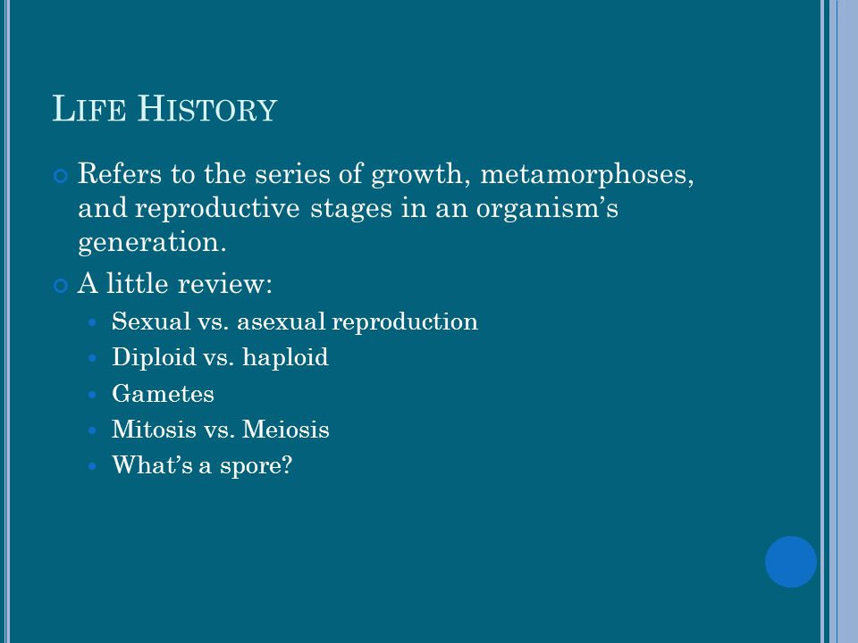 Life History Refers to the series of growth, metamorphoses, and reproductive stages in an organism's generation.
