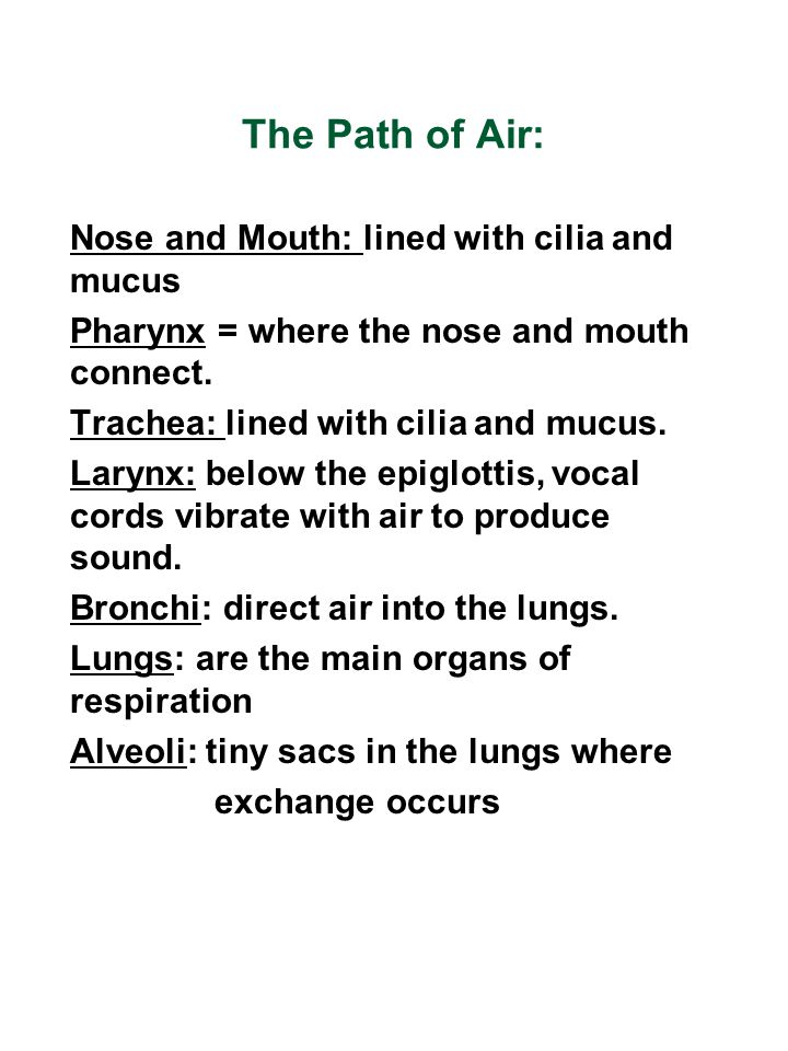 The Path of Air:
