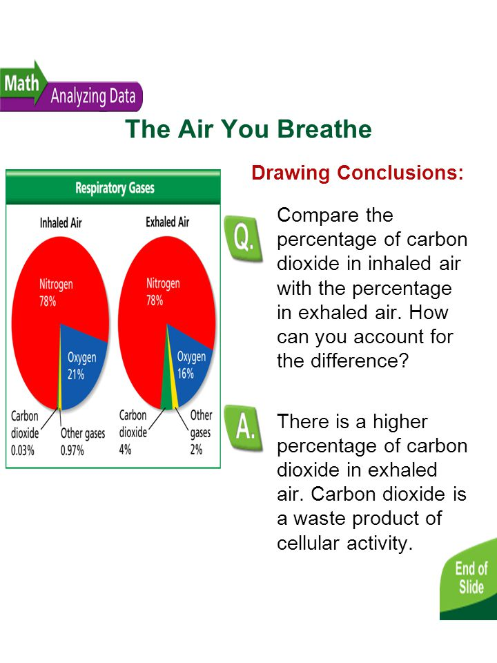 The Air You Breathe Drawing Conclusions: