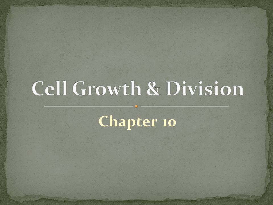 Cell Growth & Division Chapter 10