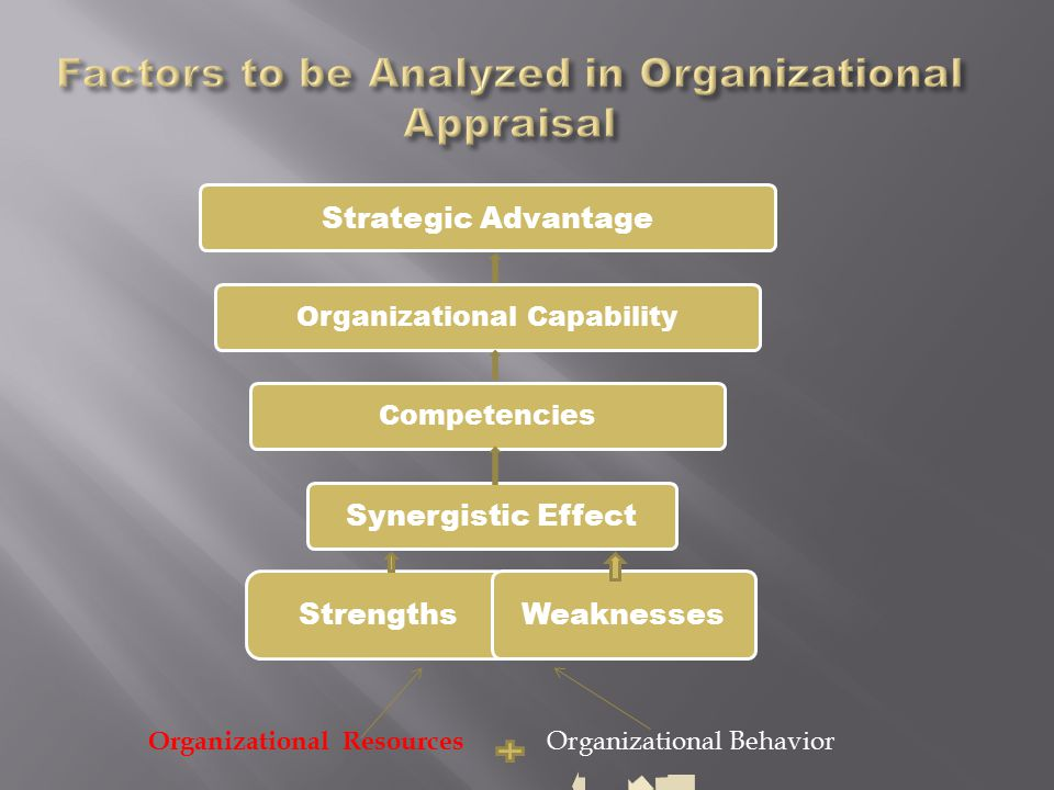 Factors to be Analyzed in Organizational Appraisal