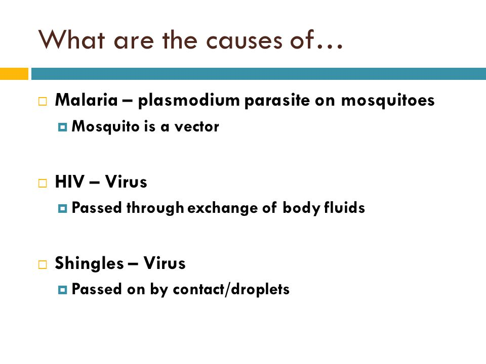 What are the causes of… Malaria – plasmodium parasite on mosquitoes