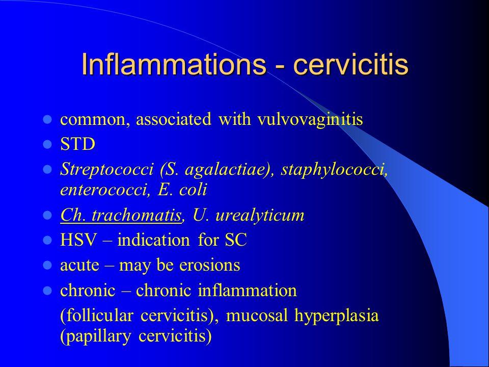 Inflammations - cervicitis