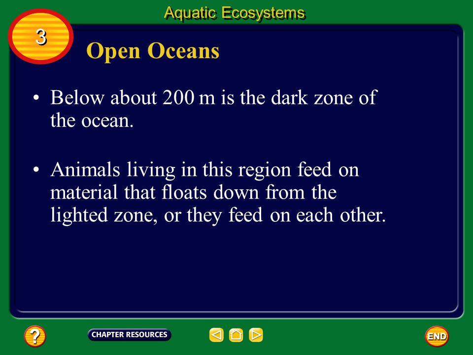Open Oceans 3 Below about 200 m is the dark zone of the ocean.