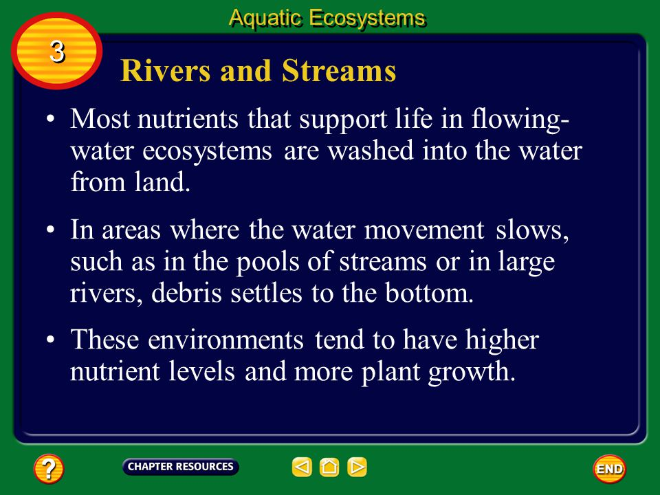 Aquatic Ecosystems 3. Rivers and Streams. Most nutrients that support life in flowing-water ecosystems are washed into the water from land.