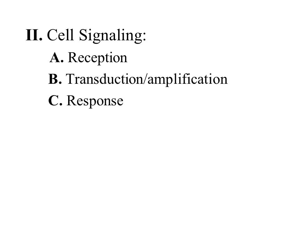 II. Cell Signaling: B. Transduction/amplification C. Response
