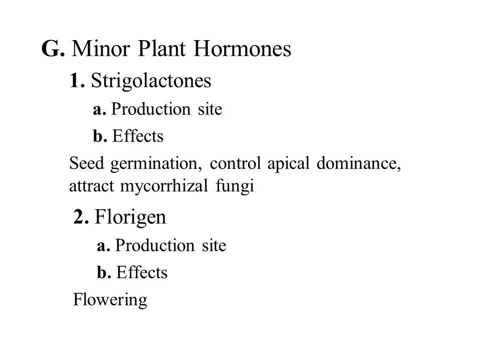 G. Minor Plant Hormones 1. Strigolactones 2. Florigen