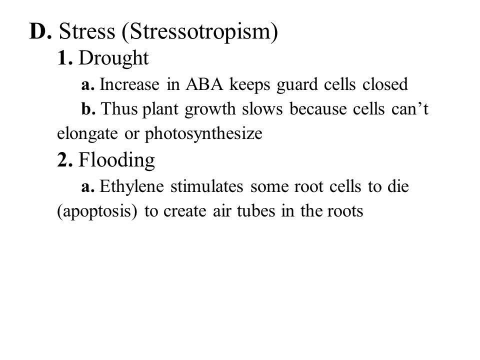 D. Stress (Stressotropism)