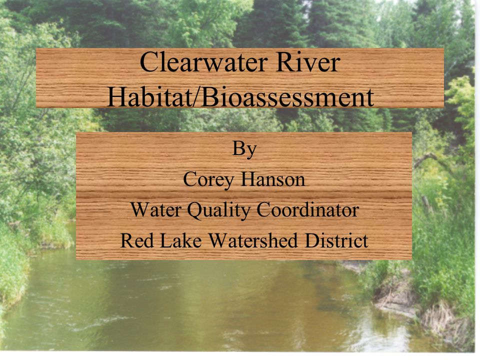 Clearwater River Habitat/Bioassessment