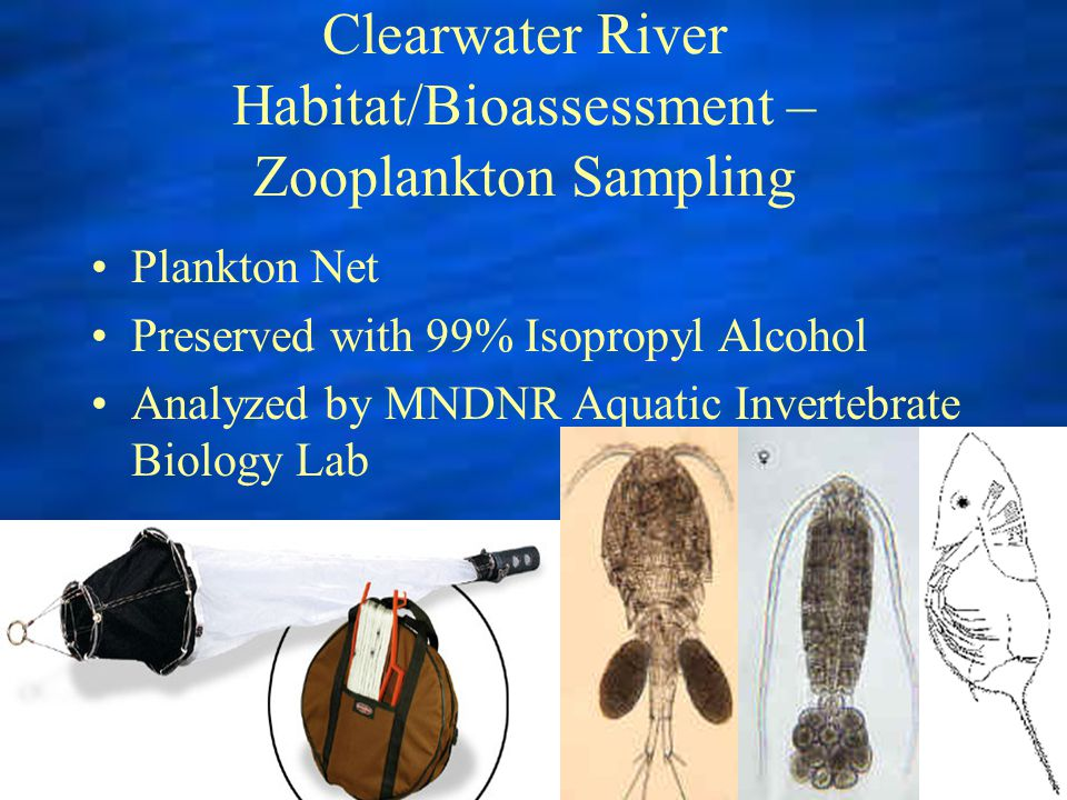 Clearwater River Habitat/Bioassessment – Zooplankton Sampling