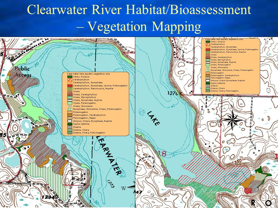Clearwater River Habitat/Bioassessment – Vegetation Mapping
