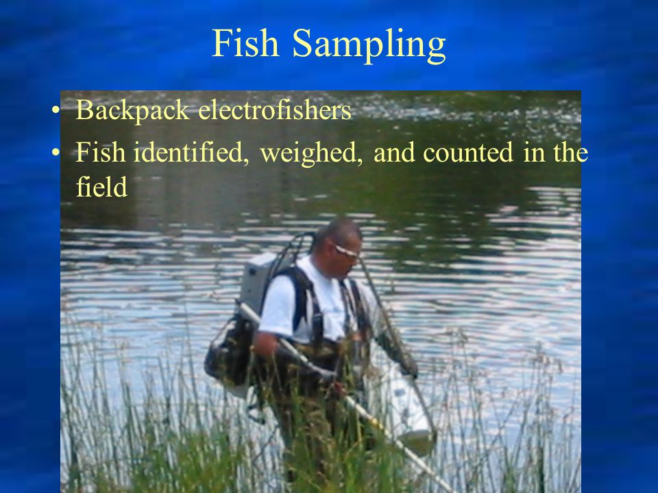 Fish Sampling Backpack electrofishers