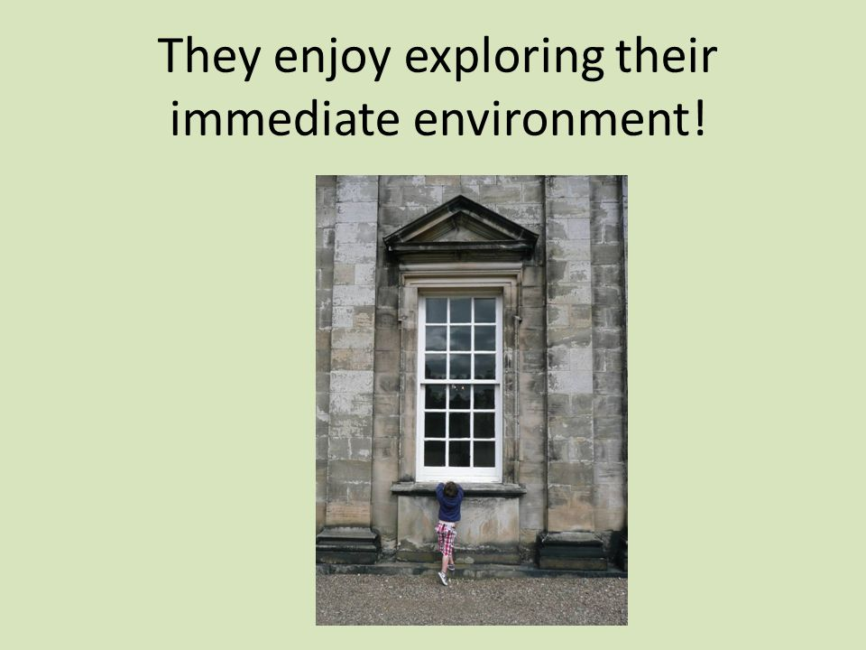 They enjoy exploring their immediate environment!