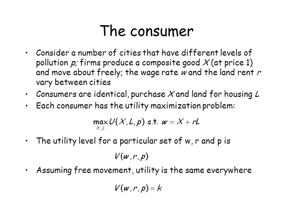 The consumer