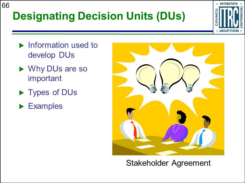 Designating Decision Units (DUs)