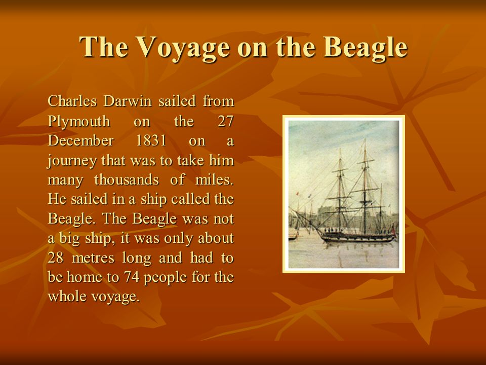 The Voyage on the Beagle
