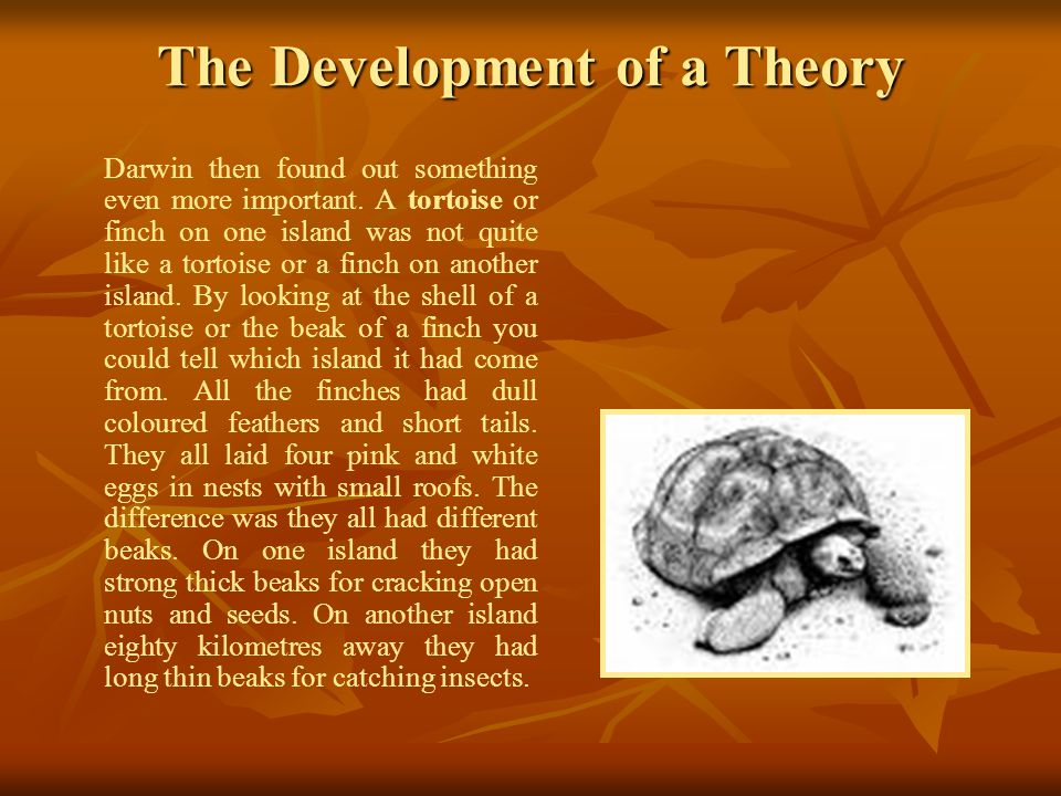 The Development of a Theory