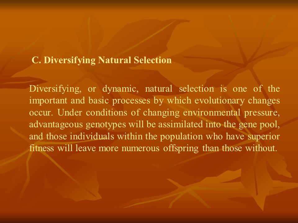 C. Diversifying Natural Selection