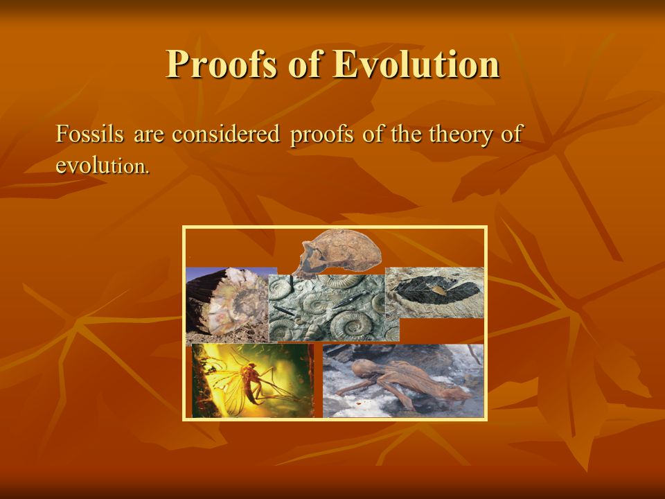 Proofs of Evolution Fossils are considered proofs of the theory of evolution.