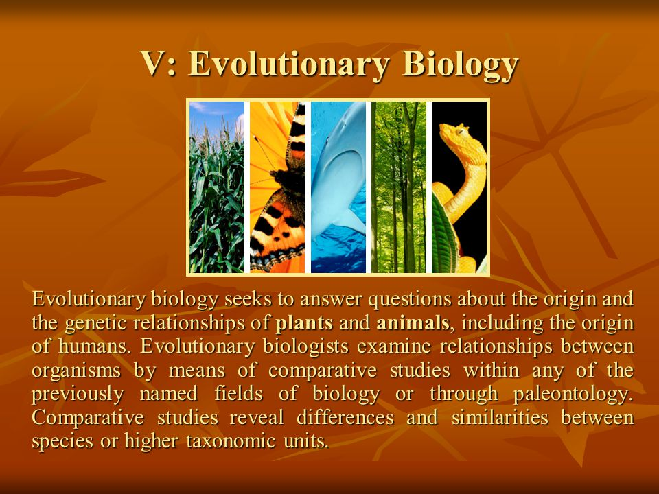 V: Evolutionary Biology