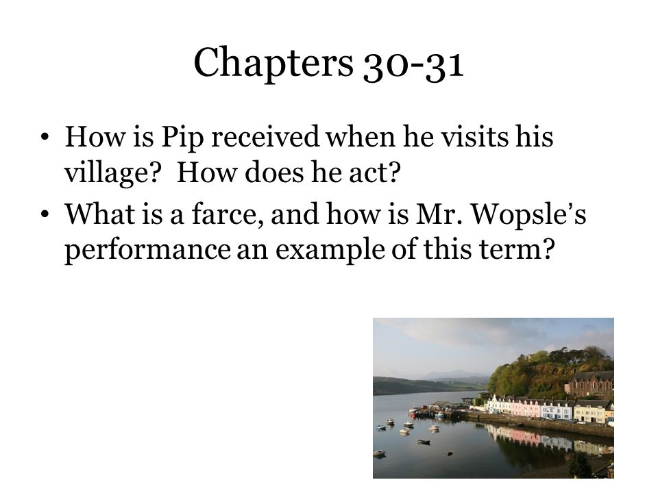 Chapters 30-31 How is Pip received when he visits his village How does he act