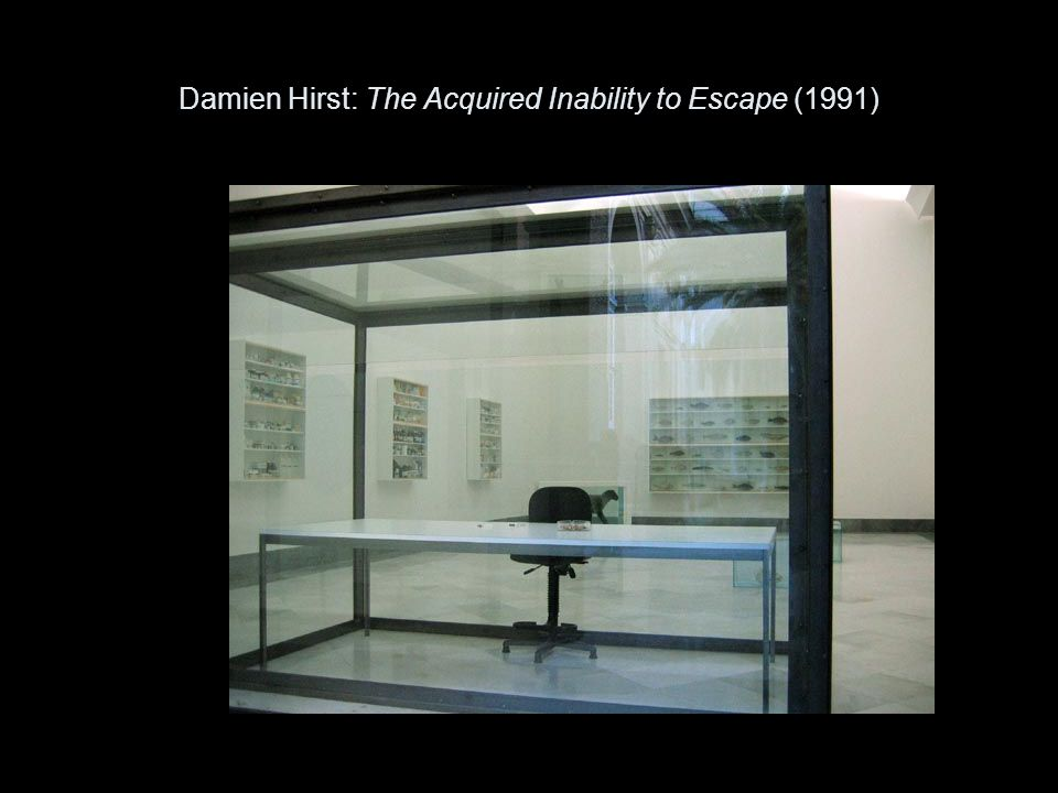 Damien Hirst: The Acquired Inability to Escape (1991)