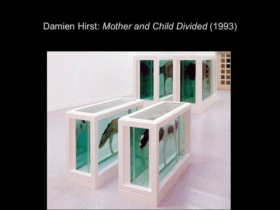 Damien Hirst: Mother and Child Divided (1993)
