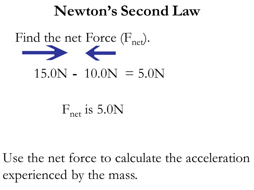 Find the net Force (Fnet).