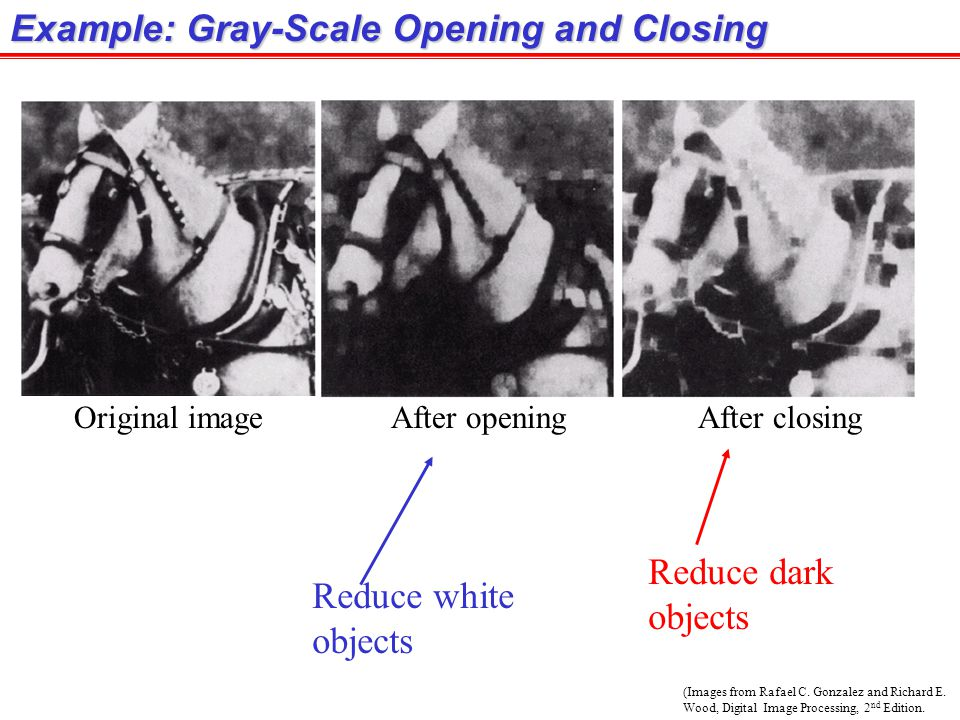 Example: Gray-Scale Opening and Closing