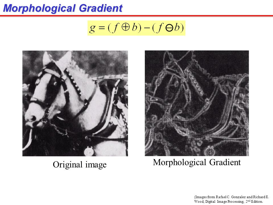 Morphological Gradient