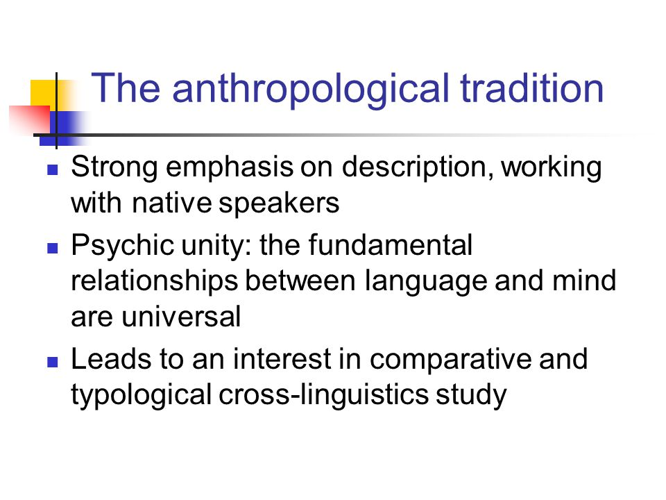 The anthropological tradition