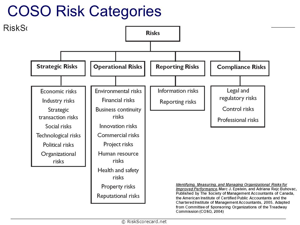 COSO Risk Categories
