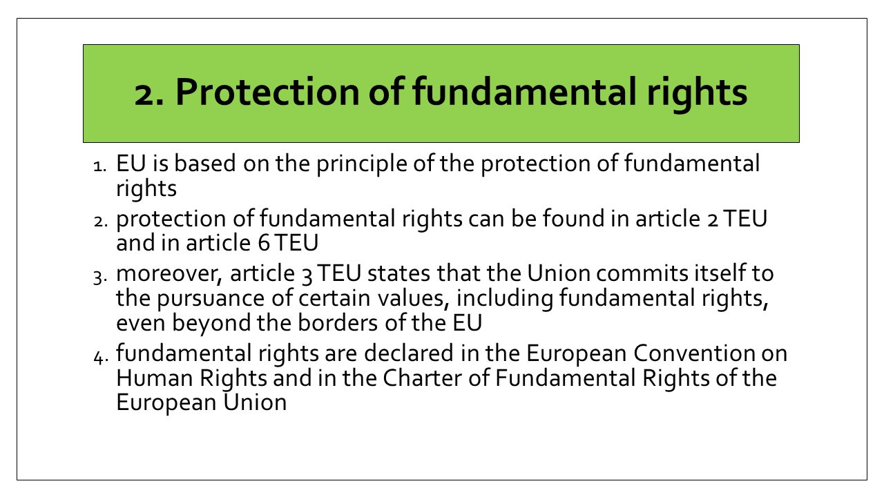 2. Protection of fundamental rights