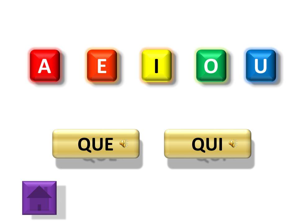 A E I O U QUE QUI