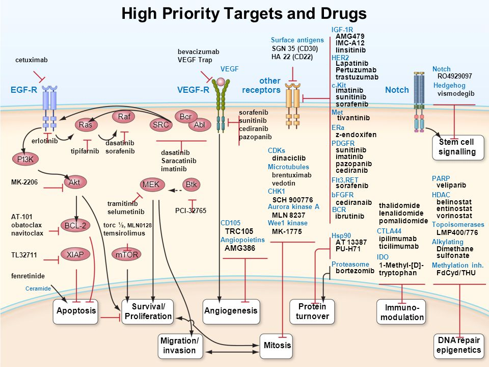 High Priority Targets and Drugs