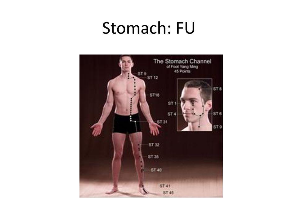 Stomach: FU