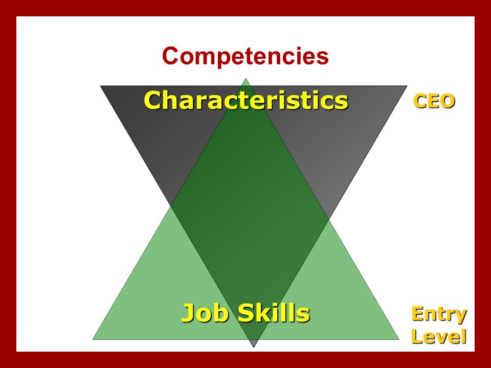 Competencies Characteristics Job Skills CEO Entry Level