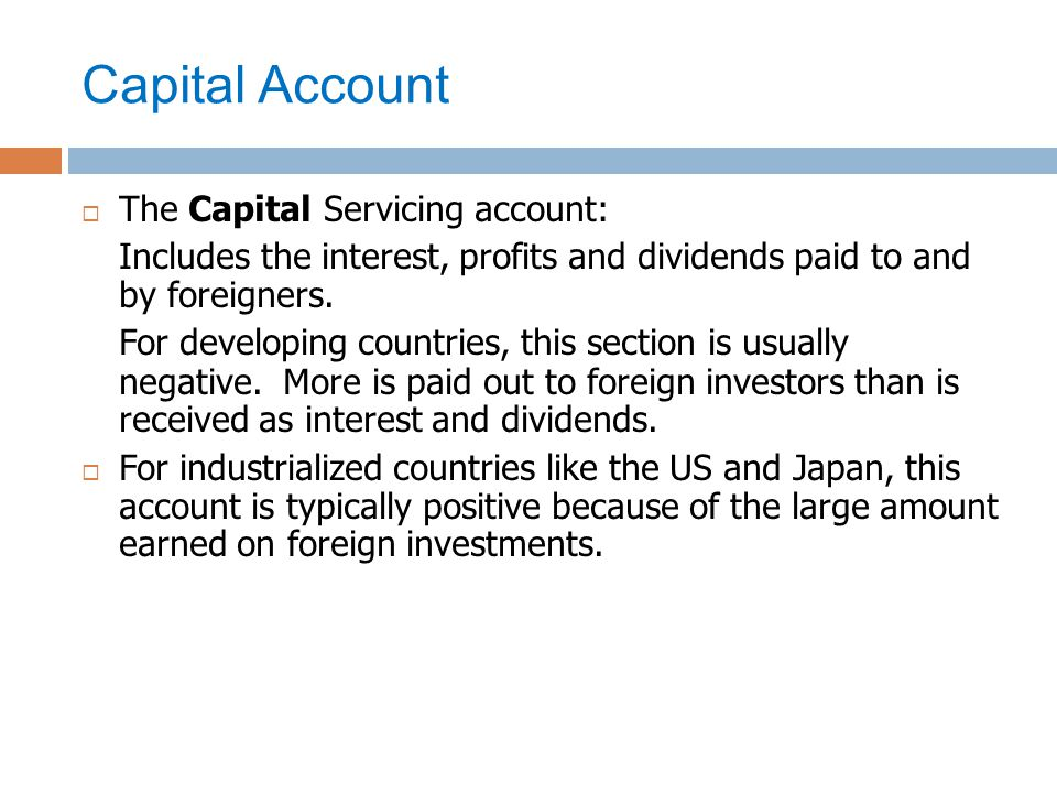 Capital Account The Capital Servicing account: